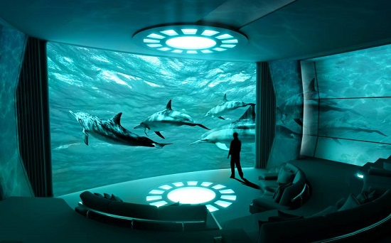 Imax_dolphins