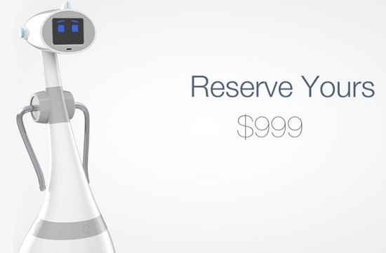 Luna Personal Robot Launches For $999