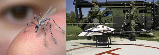 insect drones.jpg
