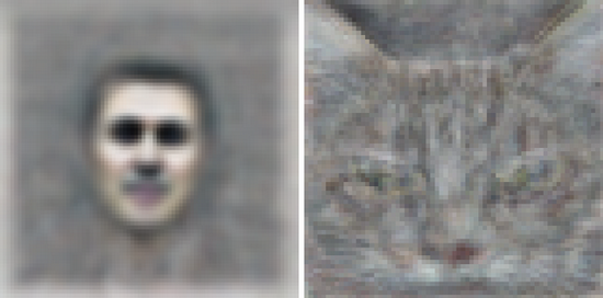 unsupervised_icml2012_cat_and_face.png